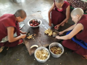 Nonnen Tibet.de Patenschaften Ernährung